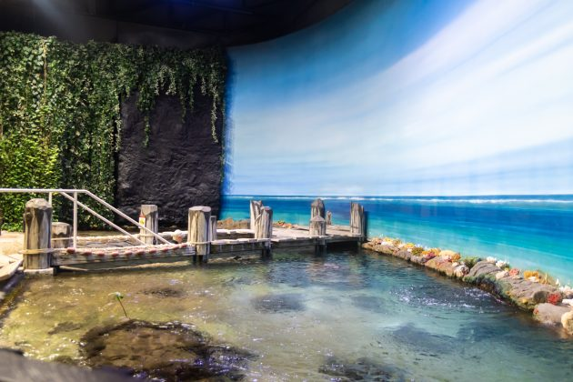 Samoa, wie es aus dem Baedeker. Die Fische in den großartigen Meerwasseraquarien sind allerdings echt.