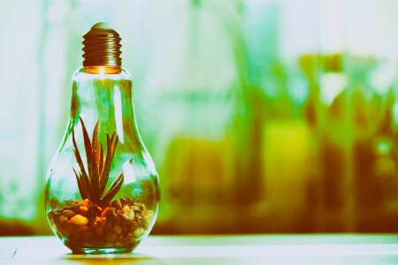 Neue Verwendung für Leuchtmittel nach der Energiewende nach Art Ingrid Nestle?